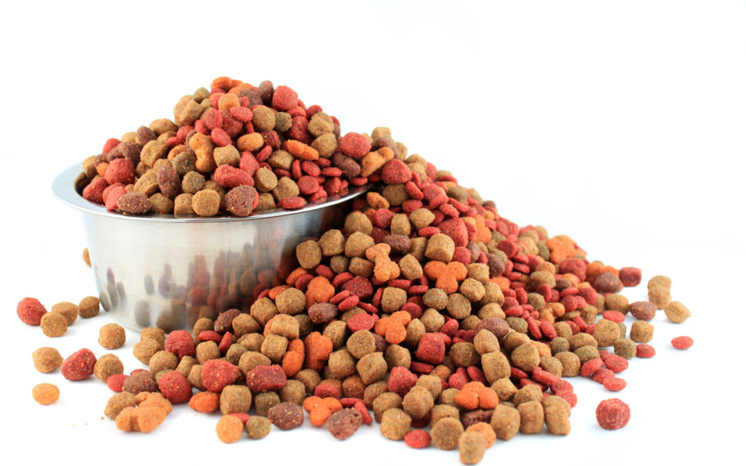 The Basics of Pet Food
